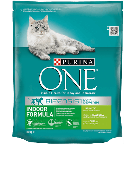 7613035468047_12297760PurinaONEIndoor800G_PRODUCT_DETAIL_mob_400_x_500 (1).png