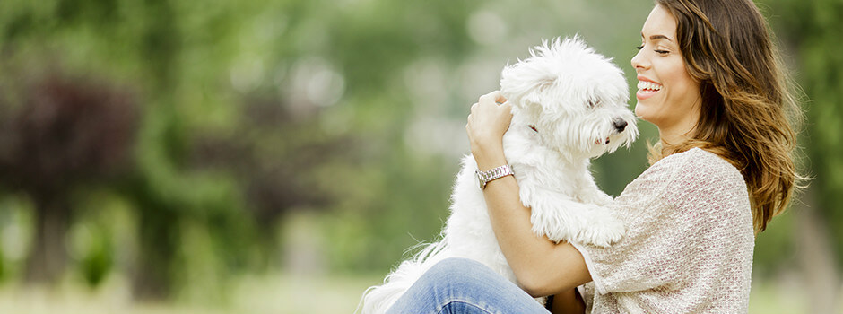 Fluffy white dog with owner