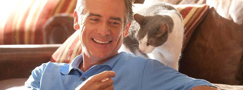 1235bf9aa640 Ταΐζοντας σωστά και ισορροπημένα τη γάτα σας