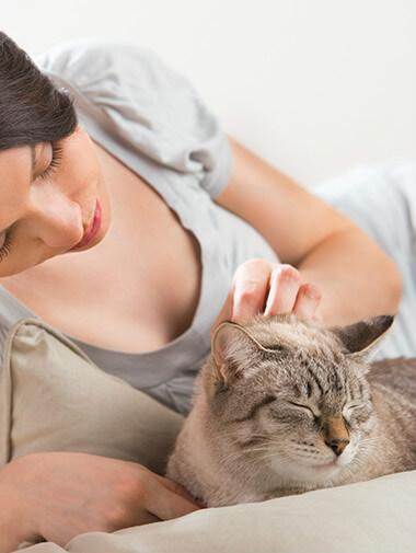 Ποιά ράτσα μου ταιριάζει καλύτερα; Μία γυναίκα χαϊδεύει μια γάτα και εκείνη γουργουρίζει